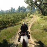 Скриншот The Witcher 3: Wild Hunt - Hearts of Stone – Изображение 9
