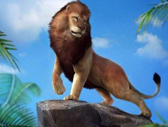 Рецензия на Zoo Tycoon (2013)
