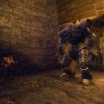 Скриншот Dungeons & Dragons Online – Изображение 314
