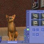 Скриншот The Sims 2: Pets – Изображение 29