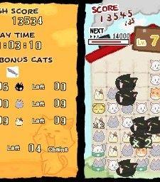 Cat Frenzy