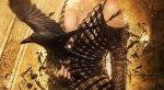 Женщины осаждают Тора в трейлере «Белоснежки и Охотника 2» - Изображение 4