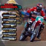 Скриншот Silkolene Honda Motocross GP – Изображение 3