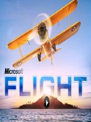 Обложка Microsoft Flight