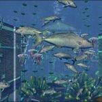 Скриншот Fish game – Изображение 11