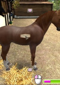 Обложка My Gallops 3D