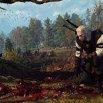 Скриншот The Witcher 3: Wild Hunt – Изображение 21