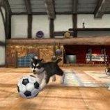 Скриншот Nintendogs + Cats – Изображение 10