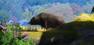 Zoo Tycoon (2013). Видео #3