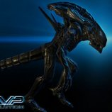 Скриншот Alien vs Predator: Evolution