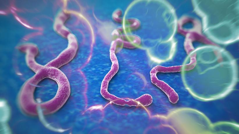 Эпидемия лихорадки Эбола подстегнула загрузки Plague Inc.  - Изображение 1