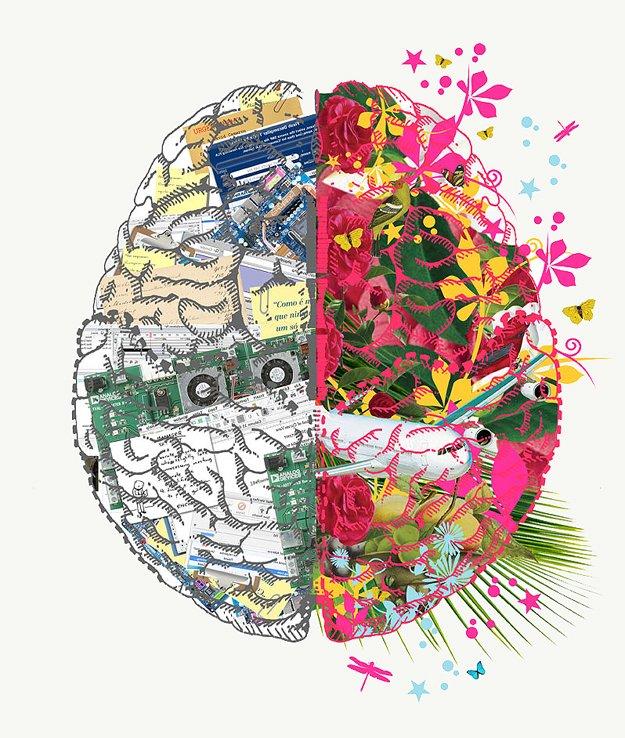 Вот такая «Люси»: 7 мифов о мозге - Изображение 8