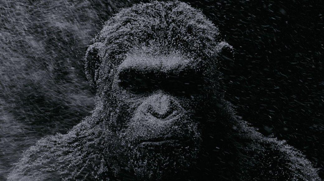 Рецензия на «Планету обезьян: Война» . - Изображение 1