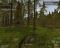 Wolf Simulator v1.0, скриншоты . Почти готовы к выходу в ранний доступ Steam. - Изображение 8