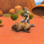 Скриншот Paws & Claws Pet Vet: Australian Adventures – Изображение 5
