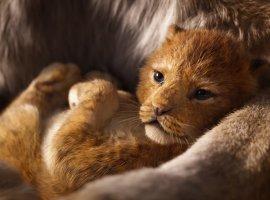 Вышел первый трейлер «Короля льва». И в нем есть парочка известных сцен!