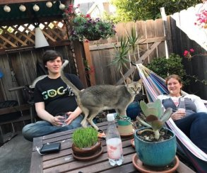 Shard: друзья погибшего разработчика заканчивают игру его мечты