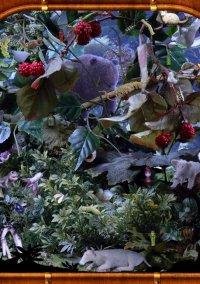 The Lost Bride and a Hidden Treasure – фото обложки игры