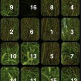 Скриншот Abundant Puzzles: Nature – Изображение 3