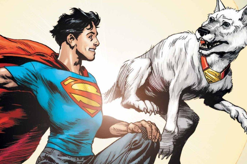 Какие супергерои появятся вовтором сезоне «Титанов»? Даже суперпес Крипто! | Канобу