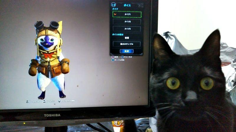 Умиление намаксимум: как настоящие коты реагируют навиртуальных изMonster Hunter World. - Изображение 1