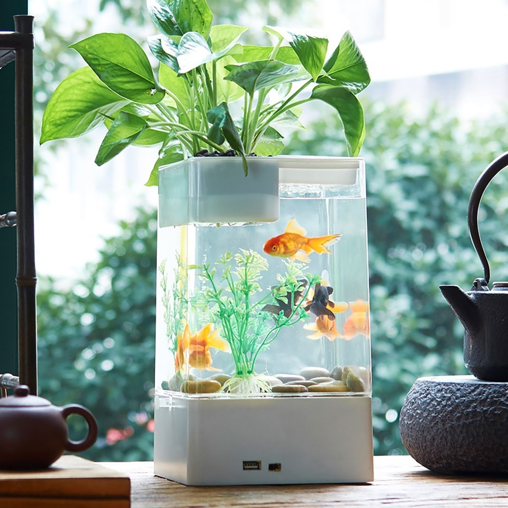 Заведите рыбок иоткройте окна. Как стать продуктивнее наудаленке благодаря растениям идизайну | Канобу - Изображение 17005