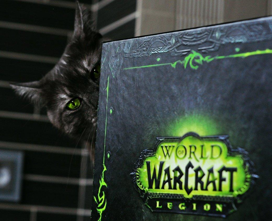 Распаковка коллекционного издания World ofWarcraft: Legion. С котом! | Канобу - Изображение 1